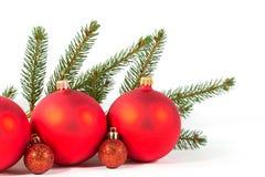 Красные шарики рождества и ветвь ели Стоковые Фото