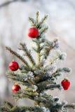 Красные шарики рождества на покрытой снег ветви дерева Стоковая Фотография