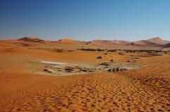Красные дюны пустыни Namib Стоковое фото RF