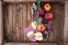 Красные яблоки на деревянной коробке с листьями и цветками Сбор осени плодоовощей Взгляд сверху Открытый космос для текста Стоковые Изображения