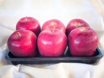 Красные яблоки в утре Стоковая Фотография