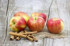 Красные яблоки и ручки циннамона Стоковые Изображения