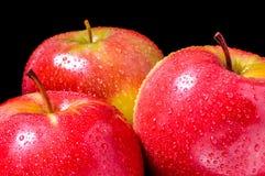 Красные яблоки стоковые изображения