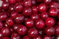 Красные ягоды вишни стоковая фотография