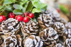 красные ягоды и конусы рождества на снеге Стоковое фото RF