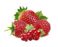 Красные ягоды, смородина, поленика, изолированная клубника Стоковое Изображение RF
