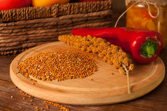 Красные chili и зерна Стоковое фото RF