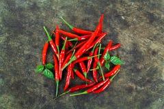 Красные chili и порошок chili Стоковое фото RF