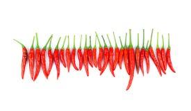 Красные chili и порошок chili Стоковое Фото