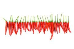 Красные chili и порошок chili Стоковое Изображение RF