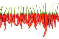 Красные chili и порошок chili Стоковые Фото