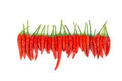 Красные chili и порошок chili Стоковые Изображения