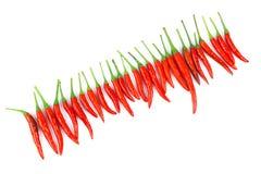 Красные chili и порошок chili Стоковое Изображение