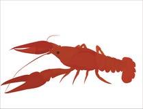 Красные crayfish Иллюстрация штока