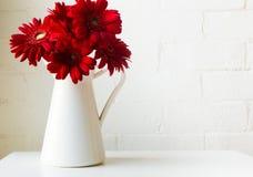 Красные gerberas в белом кувшине Стоковая Фотография RF