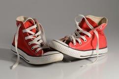 Красные gumshoes Стоковая Фотография