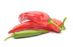 Красные pappers и изолированные перцы chili Стоковое фото RF