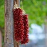 Красные ristras Чили Стоковое Фото