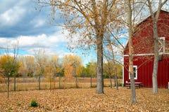 Красный амбар в осени Стоковое Фото