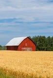 Красный амбар в поле Стоковые Фото