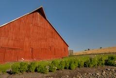 Красный амбар в ферме страны Стоковые Изображения RF