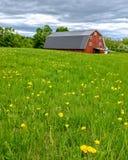 Красный амбар на ферме Стоковая Фотография RF