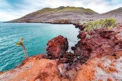 Красный ландшафт Галапагос Стоковая Фотография RF
