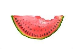 Красный арбуз, иллюстратор акварели Стоковая Фотография