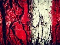 Красный белый красный цвет стоковая фотография rf