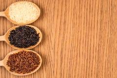 Красный, белый, и черный рис в деревянной ложке Стоковые Изображения