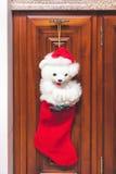 Красный ботинок рождества весит на отполированной мебели Стоковые Фотографии RF