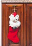 Красный ботинок рождества весит на отполированной мебели Стоковая Фотография RF