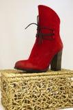 Красный ботинок Стоковые Изображения