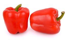 Красный болгарский перец Стоковые Изображения