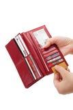 красный бумажник Стоковое Изображение RF