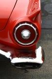 красный буревестник Стоковое фото RF