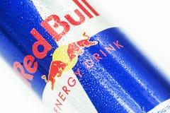 Красный бык Стоковые Изображения