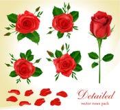 красный вектор роз иллюстрация штока