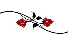 красный вектор роз Стоковое Изображение RF