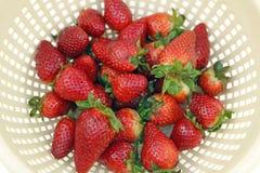 красный верх ягод Стоковое фото RF