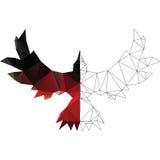 Красный ворон иллюстрация штока