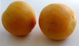 Красный грейпфрут, цитрус x paradisi Стоковые Фотографии RF