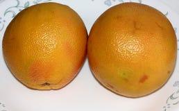 Красный грейпфрут, цитрус x paradisi Стоковые Изображения RF