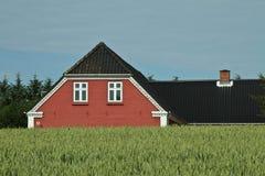 Красный дом в ландшафтах Danish в лете Стоковое Изображение