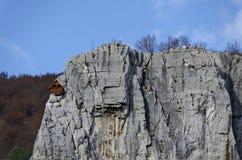 Красный деревянный дом альпиниста в Lakatnik трясет, дефиле реки Iskar, провинция Софии Стоковые Изображения RF