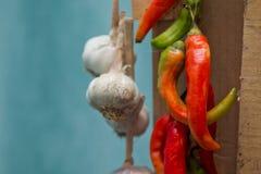 Красный ец и чеснок горячие перцы Стоковая Фотография RF