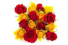 красный желтый цвет роз Стоковые Фото