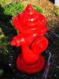 Красный жидкостный огнетушитель улицы Стоковое фото RF