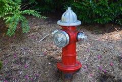 Красный жидкостный огнетушитель 1 Стоковая Фотография RF