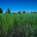 Красный загородный дом и глубокая ая-зелен трава на сумерк Стоковое Изображение RF